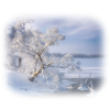 Snow White - Natur -