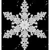 snowflake - Illustrazioni -