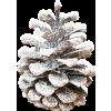 snowy pinecone - Items -