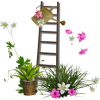 Spring Time Flowers  - Natura -