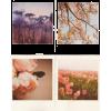 spring - Illustrations -