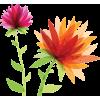 spring - Rastline -