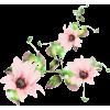 spring - Rośliny -