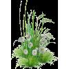 spring - Plants -