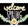 spring - Testi -