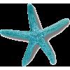 starfish - Przedmioty -