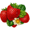 strawberries - Frutas -