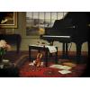 Piano - Predmeti -