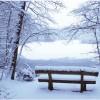 Zima Winter - Tła -