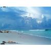 Sea - Narava -