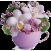 Flowers - Rośliny -