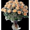 Roses - Plants -