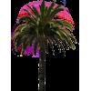 Tree - Rośliny -