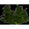 Green - Piante -