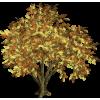 Tree - Plants -