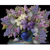 Plants Colorful - Plants -