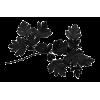 Plants Black - Biljke -