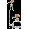 rose in bottle - Biljke -
