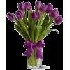 tulipans flower - Plants -