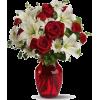 roses buket - 植物 -