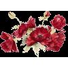 red flower - Pflanzen -