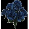 blue roses bucket - Plants -