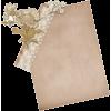 Paper - Predmeti -