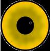 Round - Ilustracje -