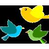 Birds - Ilustracje -