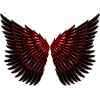 Wings - Illustrations -