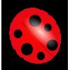 Ladybug - Ilustracje -