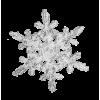 Snow - イラスト -