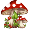 Mushroom - イラスト -