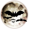 Bats - Illustrations -