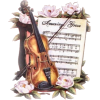 violina - Illustrations -