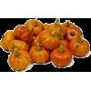 pumpkin - Vegetables -