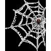 spider web - Animals -