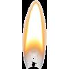 flame - Illustrazioni -