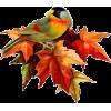 Leaf - Nature -