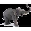 Elephant - Animali -