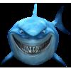 Fish - 动物 -