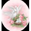 Birds - 動物 -
