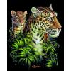 Leopard - Animals -