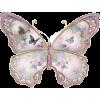 Buterfly - 動物 -