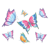 Butterflys - Animals -