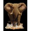 Elefant - Animals -