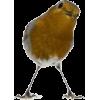 bird yellow - Zwierzęta -