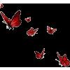 leptiri - Životinje -