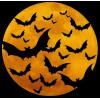 bats in night - Pozadine -
