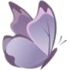 Buttrerfly - Items -